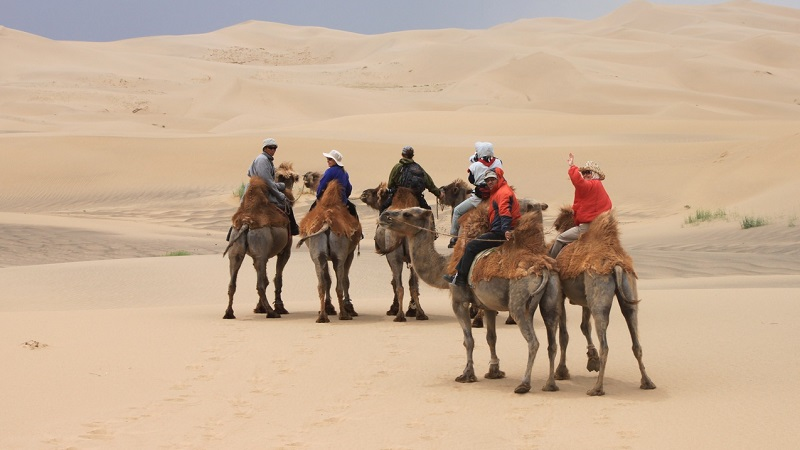 Кочевники пустыни Гоби